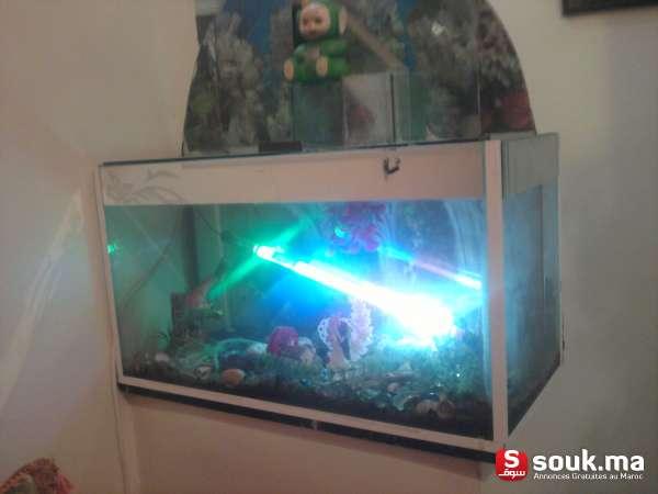 2 aquarium vendre meknes souk ma. Black Bedroom Furniture Sets. Home Design Ideas