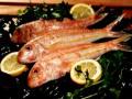 """"""" بيع جميع أنواع الأسماك وفواكه البحر الطرية والمجمدة"""""""