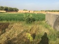 Ferme Domaniale 3 hectares Sid Zouine Marrakech