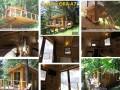 Devenir propriétaire  d`une cabane  au foret avec facilite de payement